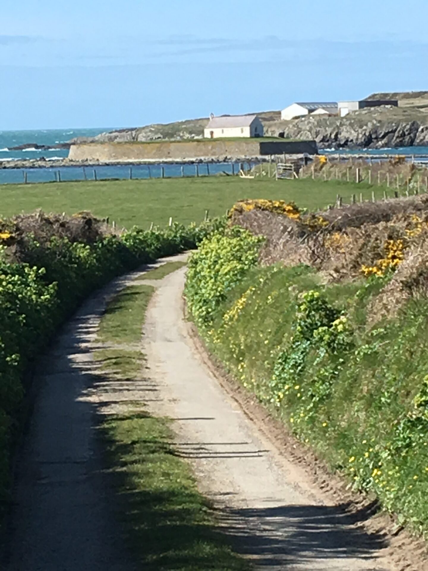 The lane leading to St Cwyfan's island Church, Anglesey, seen on a Guided Bie Tour.